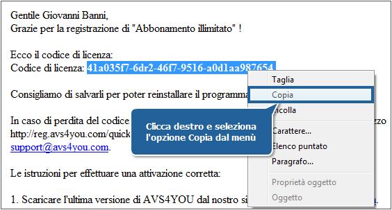 avs audio converter serial number