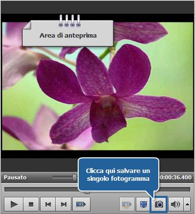 Come esportare le immagini da un video? Passo 4